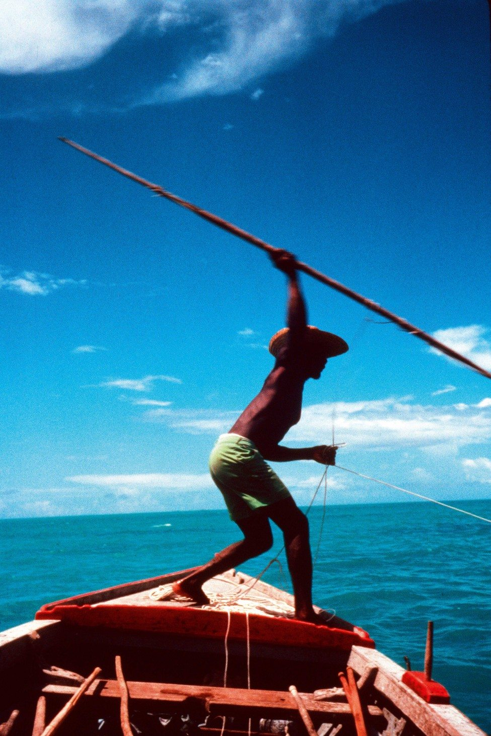 A turtle hunter aiming a harpoon at an adult green turtle at Cosmoledo Atoll in 1982. The harpoon head, which is attached to a cord held by the hunter, will enter the turtle's carapace and dislodge from the 'baton'. The hunter will then reel in the turtle by the cord.<br />