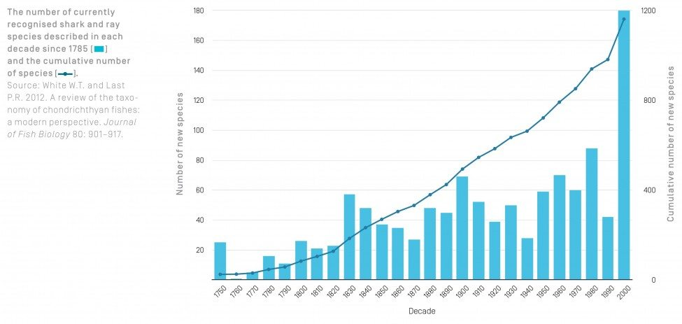 The number of currently recognised shark and ray species described in each decade since 1785 and the cumulative number of species.<br /> Source: White W.T. and Last P.R. 2012. A review of the taxonomy of chondrichthyan fishes: a modern perspective. Journal of Fish Biology 80: 901–917.