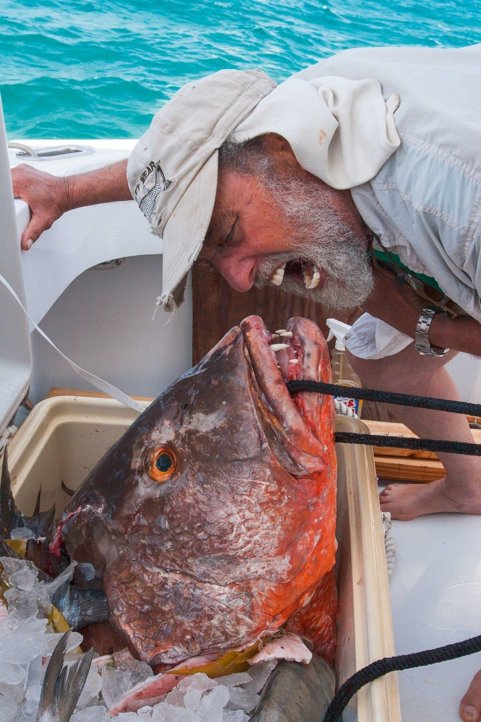 Samuel 'Doc' Gruber, the founder of the Shark Lab, gets up close with a snapper.<br /> Photo by Matthew Potenski
