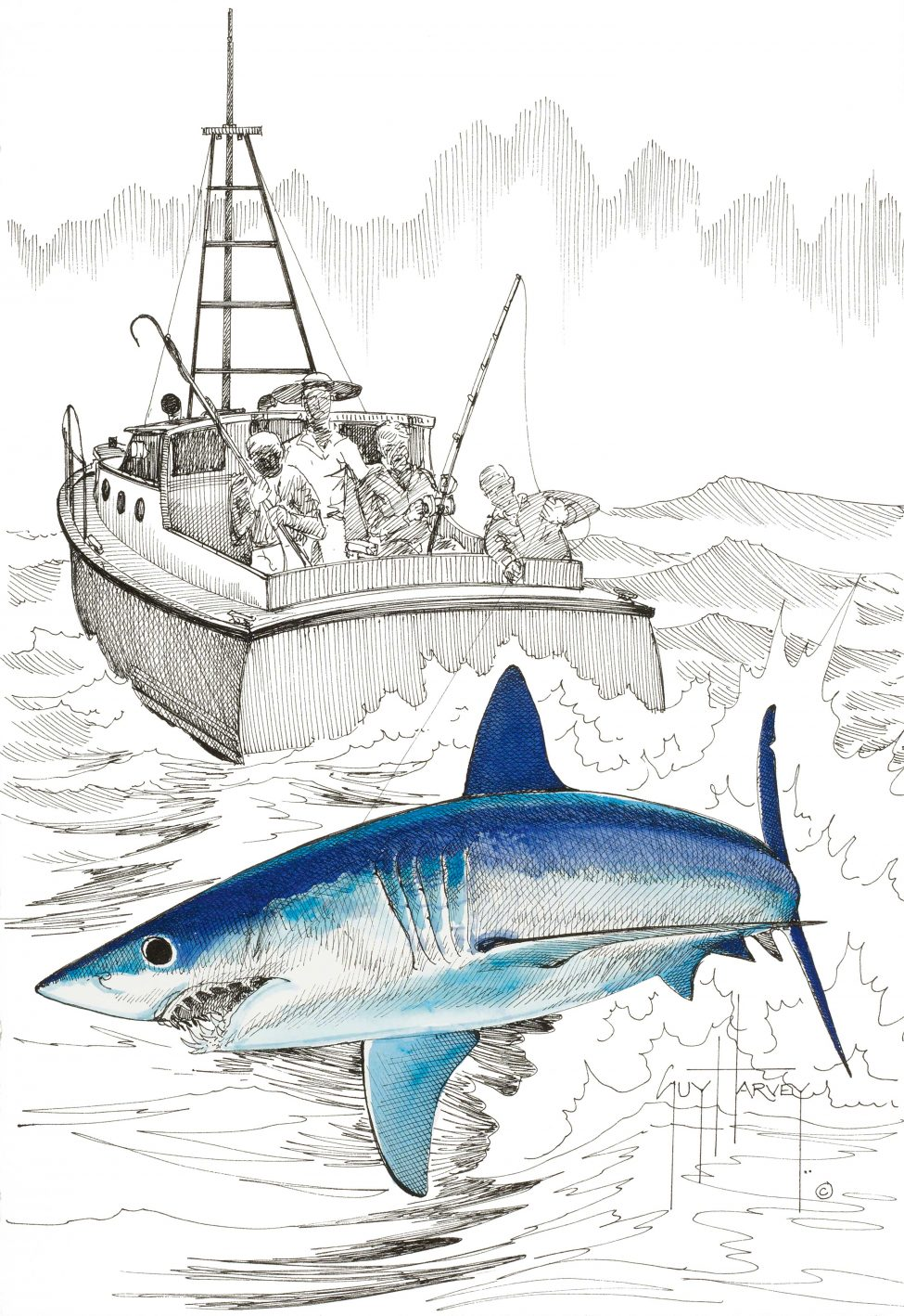 Artworks by Guy Harvey | Guy Harvey Ocean Foundation