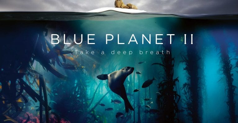 Blue Planet II wins hearts and minds